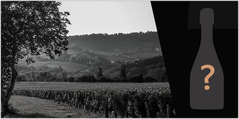 Nouvelle marque et nouvel univers pour nos Crémant de Bourgogne !
